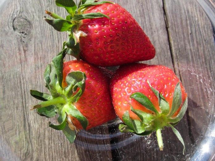 Jordbær 3Cookies